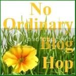 No Ordinary Blog Hop
