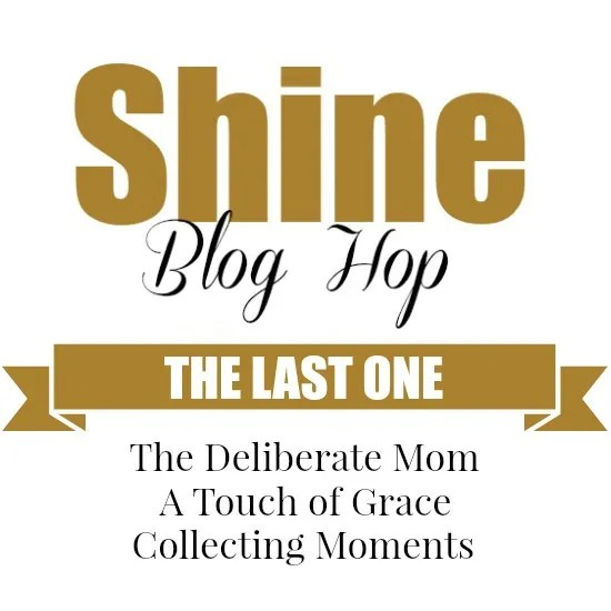Yes friend... it's true. This is the last SHINE Blog hop. After some careful thought and consideration, we have decided to retire the SHINE Blog Hop.