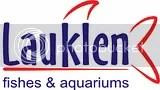 Akuarium Kolam, Taman, dan Air mancur