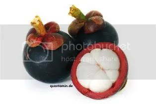 natural garcinia trim plus