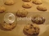 Heartland Gourmet Gluten-Free Chocolate Chip Cookies