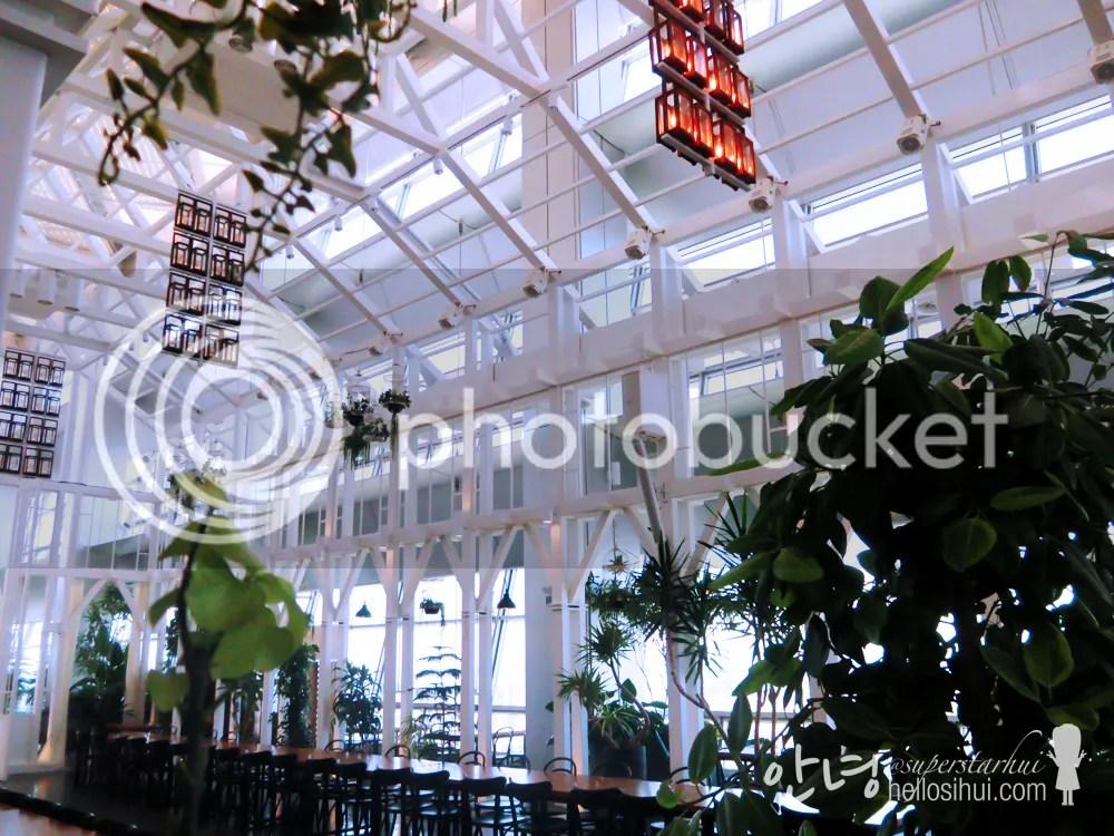photo IMG_3082 copy_zps3d3ywour.jpg