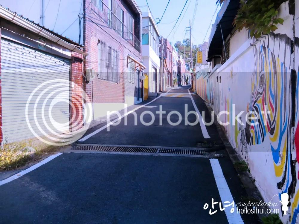 photo IMG_4207 copy_zpsxqcdgvfu.jpg
