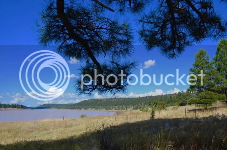 photo DSC_0040201_zpsmovrvzy3.jpg