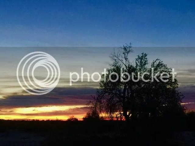 photo IMG_3524_zpskrdxsohu.jpg