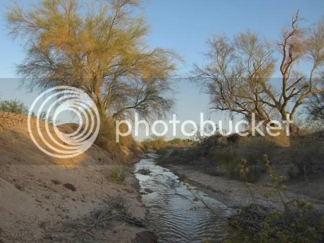 Desert streams photo SonoranApril20131378a_zps84defb6b.jpg