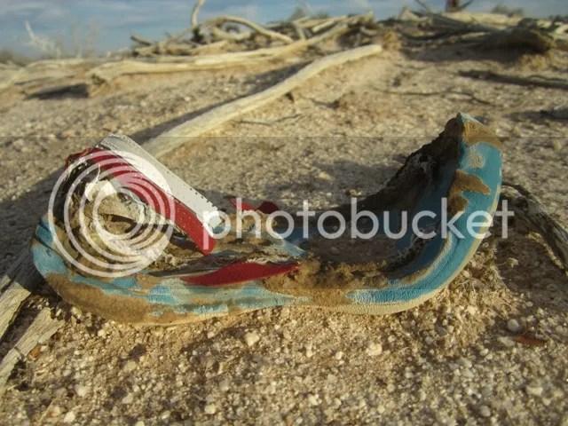 Battered shoe photo SonoranMar20132087a_zps7e9ae01d.jpg