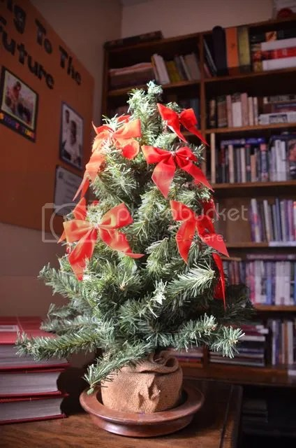 photo SonoranXmastree_zps8aebfa4d.jpg