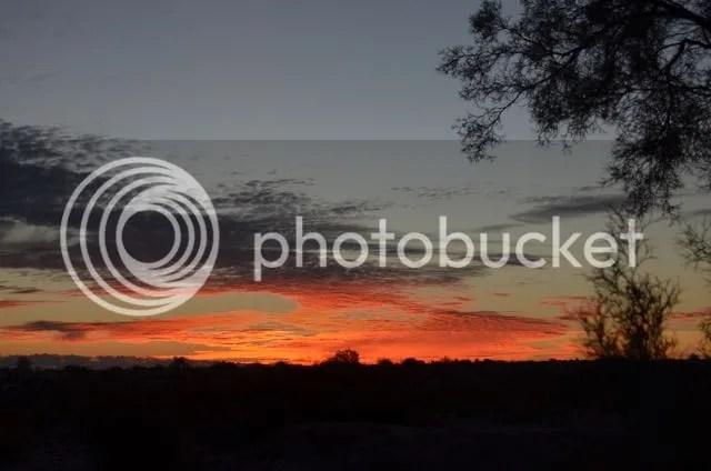 photo Sonoransunrise012015_zps8bf80a46.jpg