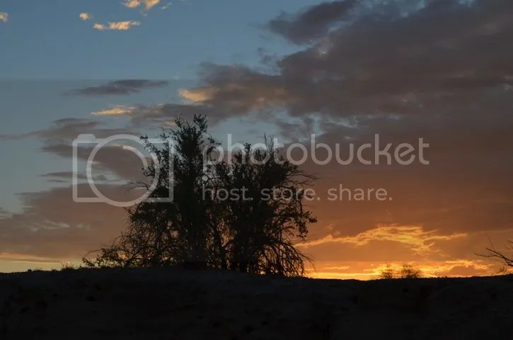 Sonoran sunset photo SonoransunsetAug_zps1b246ef6.jpg
