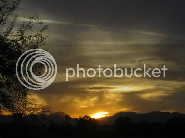 photo SonoransunsetNov13_zpsbb89133d.jpg