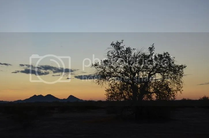 photo Sonorantwilight_zpsfbb0460b.jpg