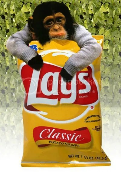 lays-potato-chips-regular
