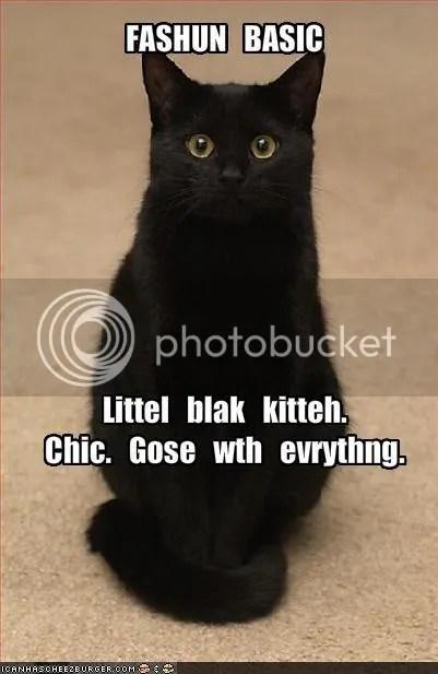 photo LittleBlackKitteh_zps84b7d823.jpg