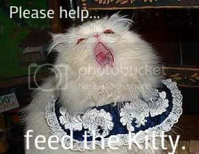 feed-the-kitty_zpsf24cdf96 photo feed-the-kitty_zps81a689db.jpg