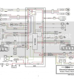 big dog wiring harness wiring diagram 8505 perko wiring diagram [ 1024 x 791 Pixel ]