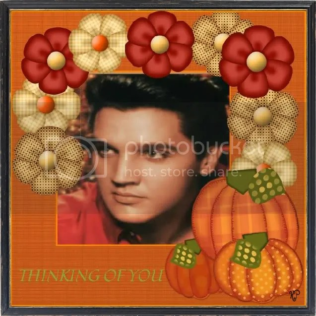 Free Fall Harvest Wallpaper 1000 Images About Elvis Presley Thanksgiving Fall On