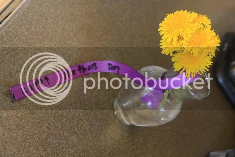 photo girlscoutceremonysumsbirthday181_zps2618f994.jpg