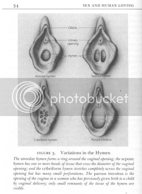 Gambar Pepek Perawan