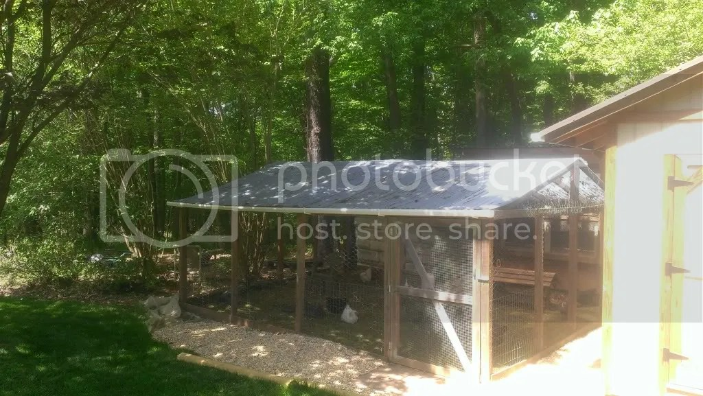chicken coop1.jpg
