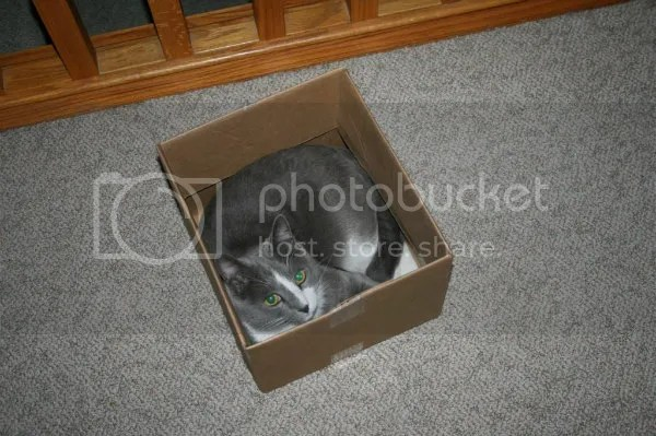 henry box