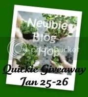 Newbie Quick #3