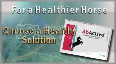 Get AbActive here