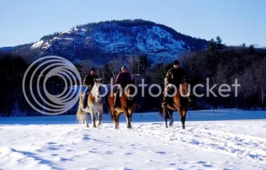 Winter Horse Ride