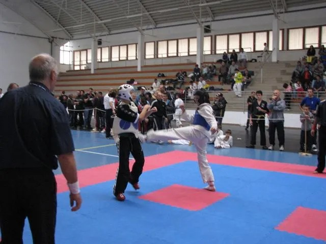 karate verseny
