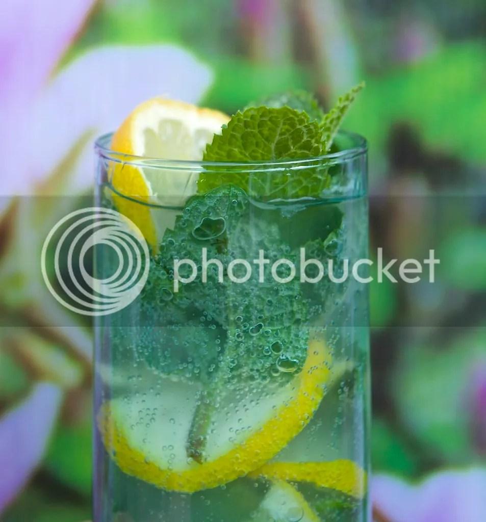 gingersyrup mint and lemon drink