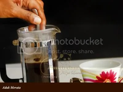 kopi_luwak_amstirdam_Aduk_merata_French-Press-Sederhana