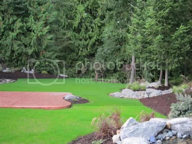 back yard landscaping silverdale