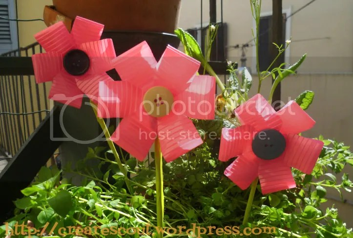 plastic cup plowers