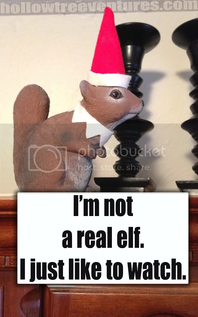 Our Not Elf On The Shelf Elf