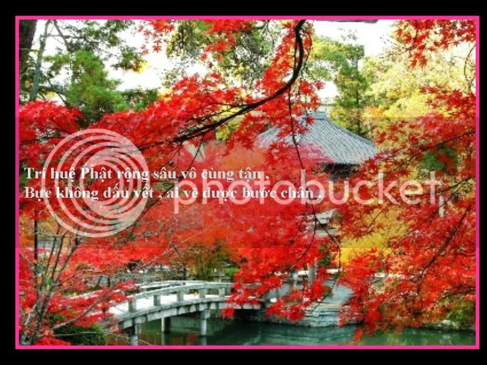 photo Slide3.jpg