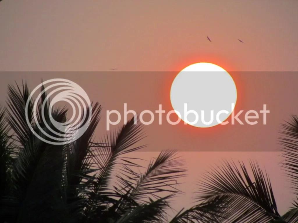 L sunset sml 041211