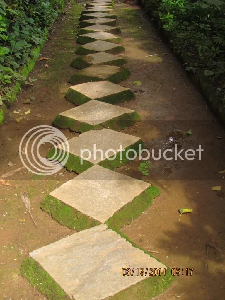 pathway 130811