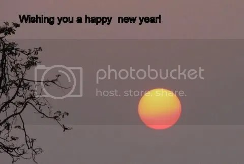 new year wishes 140411