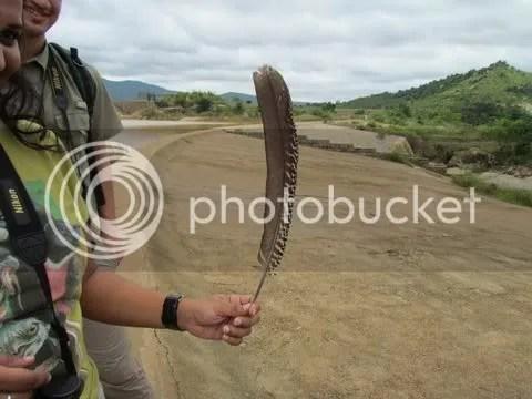 feather maralavaid lake 310811 ntp
