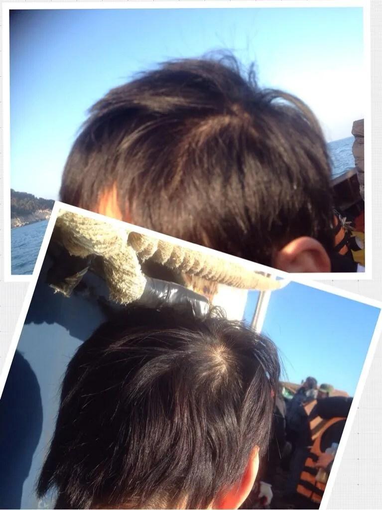 photo BcILsRaCAAAyOX3jpg_large.jpg