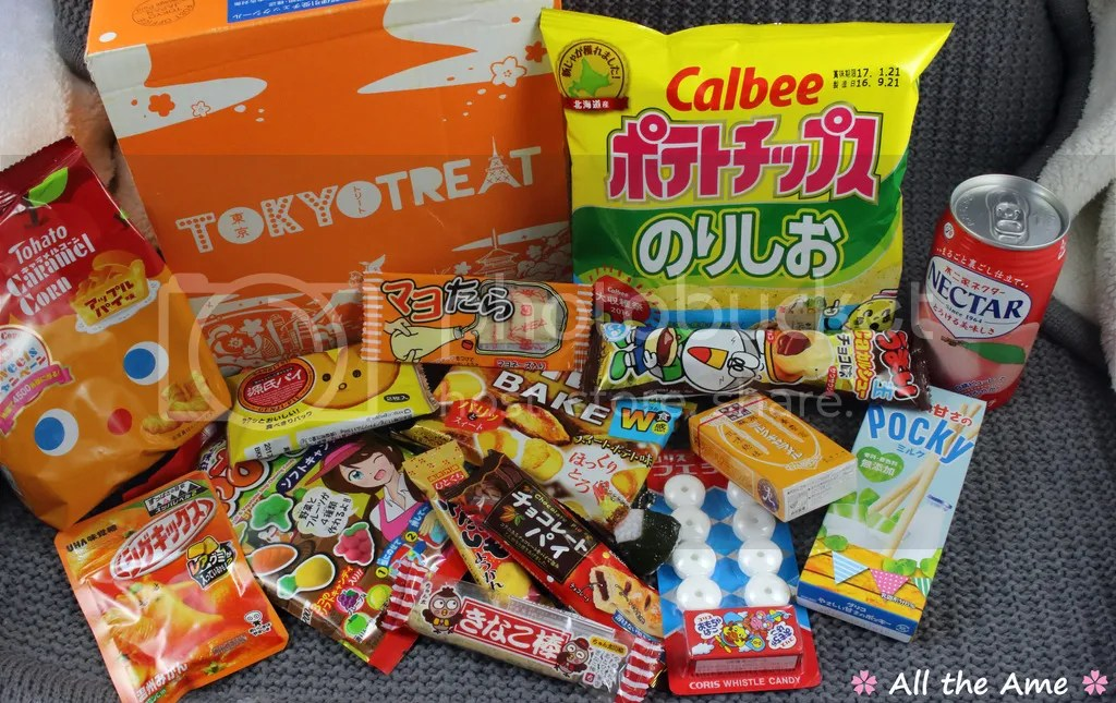 photo TokyoTreat November 2016 Unboxing_zpsliirwlpp.jpg