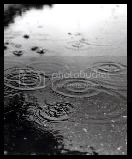 Rain____by_blazingsaddle.jpg