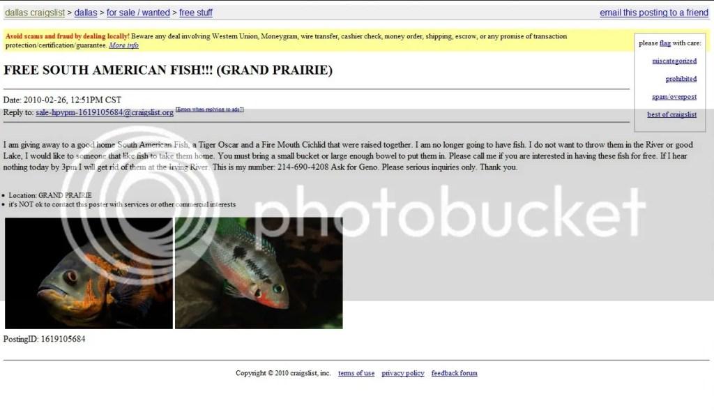 Access Craiglist Com Craigslist Dallas Fort Worth Jobs