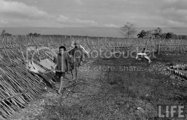 Redsvn-Lang-Son-1950-08.jpg