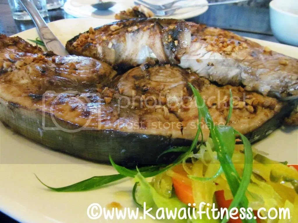Blue Marlin steak (SLABS!!)