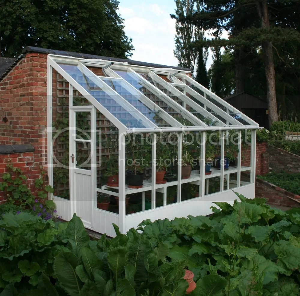 swallow dove lean to greenhouse