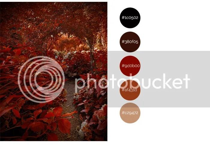 autumn swatches