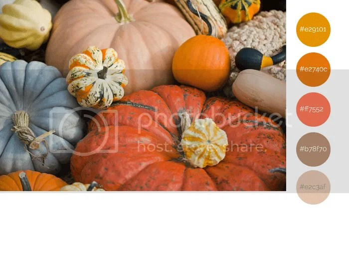 Pumpkin Swatches