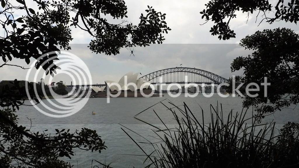photo Mrs_Macquaries_Chair_Harbour_View_zpswocshkib.jpg