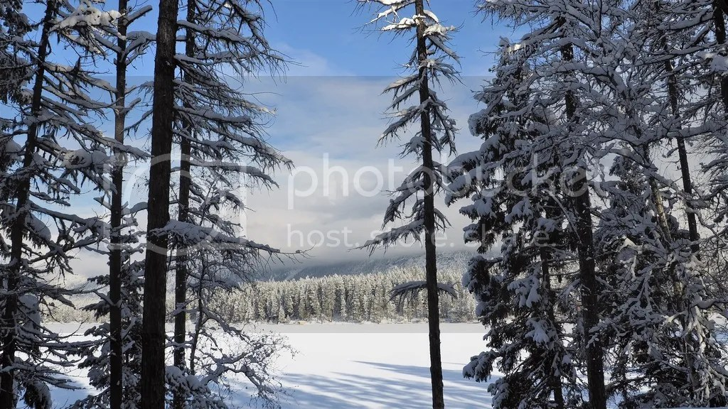 photo Rosen_Lake_1_zpslvqqb01u.jpg
